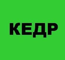 Интернет магазин КЕДР